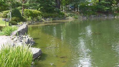 f:id:kabutoyama-tigers:20160717175351j:image