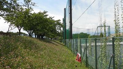 f:id:kabutoyama-tigers:20160724180615j:image