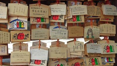 f:id:kabutoyama-tigers:20160801131652j:image