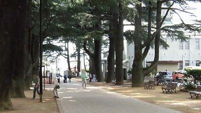 f:id:kabutoyama-tigers:20160801135633j:image