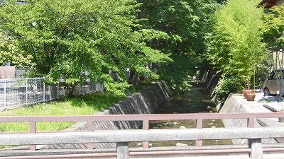 f:id:kabutoyama-tigers:20160808125210j:plain