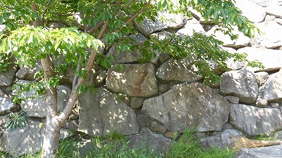 f:id:kabutoyama-tigers:20160815161409j:plain