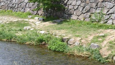 f:id:kabutoyama-tigers:20160815162109j:plain