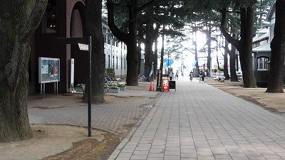 f:id:kabutoyama-tigers:20160816165603j:plain