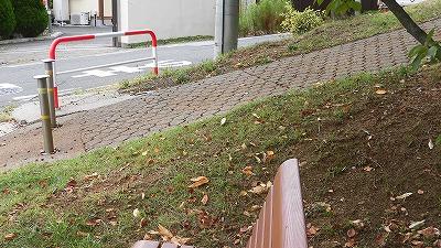 f:id:kabutoyama-tigers:20160829174319j:plain