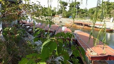 f:id:kabutoyama-tigers:20160911203228j:plain