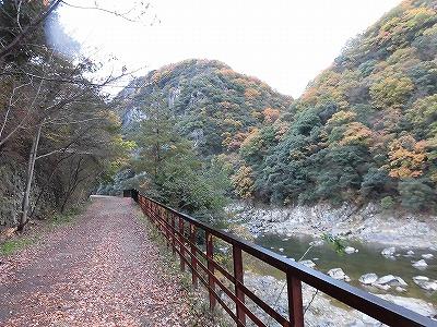 f:id:kabutoyama-tigers:20161127174923j:plain