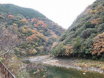 f:id:kabutoyama-tigers:20161127180849j:plain