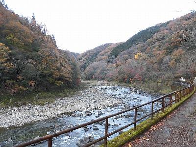 f:id:kabutoyama-tigers:20161127182801j:plain