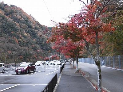 f:id:kabutoyama-tigers:20161127184204j:plain