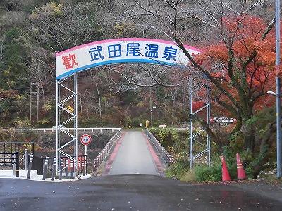 f:id:kabutoyama-tigers:20161127184216j:plain