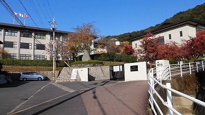 f:id:kabutoyama-tigers:20161129201738j:plain