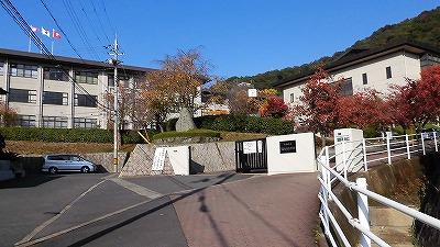 f:id:kabutoyama-tigers:20161212163903j:plain