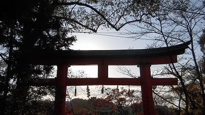 f:id:kabutoyama-tigers:20161223151617j:plain