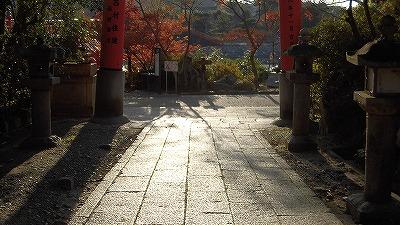 f:id:kabutoyama-tigers:20161223151714j:plain