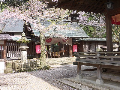 f:id:kabutoyama-tigers:20170417192546j:plain