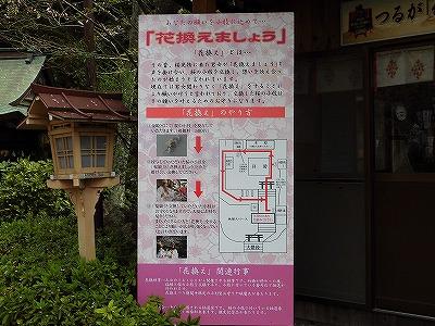 f:id:kabutoyama-tigers:20170417192642j:plain