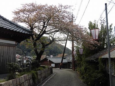 f:id:kabutoyama-tigers:20170417193821j:plain