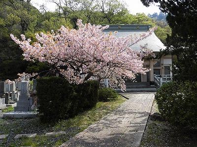 f:id:kabutoyama-tigers:20170417194126j:plain