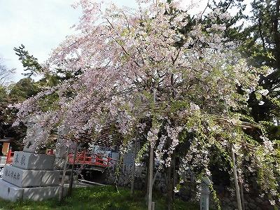 f:id:kabutoyama-tigers:20170417195415j:plain