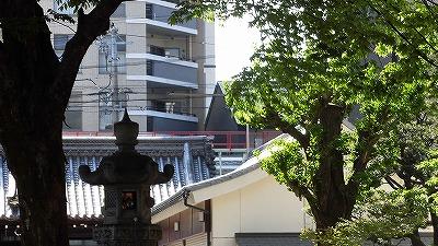 f:id:kabutoyama-tigers:20170502205152j:plain