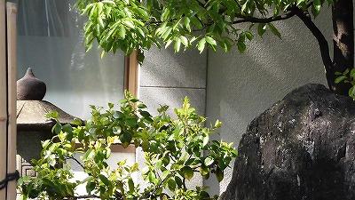 f:id:kabutoyama-tigers:20170502210908j:plain