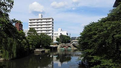 f:id:kabutoyama-tigers:20171106144732j:plain