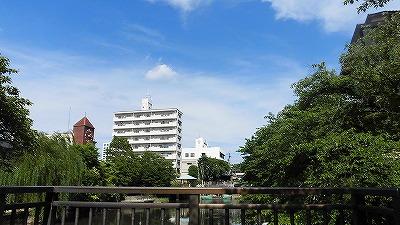 f:id:kabutoyama-tigers:20171106145542j:plain