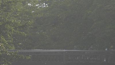 f:id:kabutoyama-tigers:20171108132833j:plain