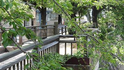 f:id:kabutoyama-tigers:20171110112616j:plain