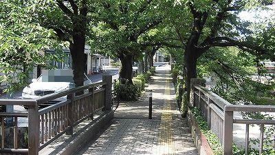 f:id:kabutoyama-tigers:20171110113746j:plain