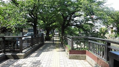 f:id:kabutoyama-tigers:20171110140119j:plain