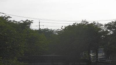 f:id:kabutoyama-tigers:20171110141412j:plain