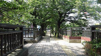 f:id:kabutoyama-tigers:20171110144047j:plain