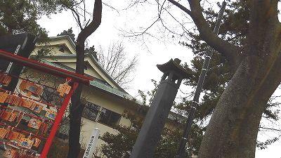 f:id:kabutoyama-tigers:20171123133637j:plain