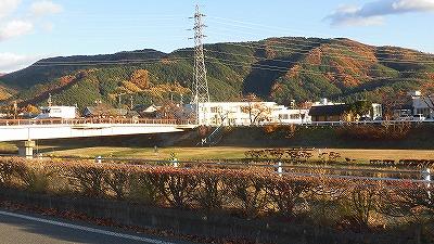 f:id:kabutoyama-tigers:20171130122342j:plain