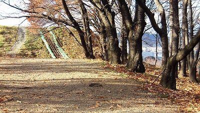 f:id:kabutoyama-tigers:20171206172418j:plain