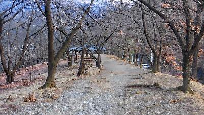 f:id:kabutoyama-tigers:20180129212404j:plain