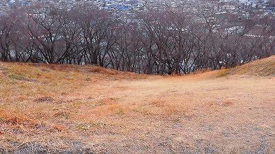 f:id:kabutoyama-tigers:20180207102147j:plain