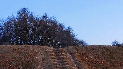 f:id:kabutoyama-tigers:20180207110611j:plain