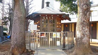 f:id:kabutoyama-tigers:20180304151315j:plain