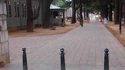 f:id:kabutoyama-tigers:20180314125843j:plain