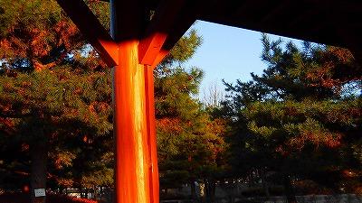 f:id:kabutoyama-tigers:20180314132459j:plain