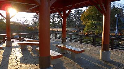 f:id:kabutoyama-tigers:20180314133031j:plain