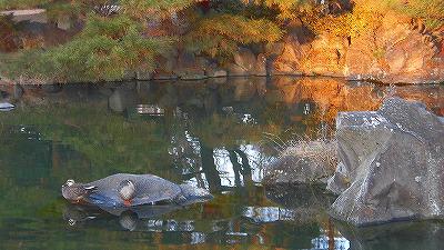 f:id:kabutoyama-tigers:20180314150335j:plain