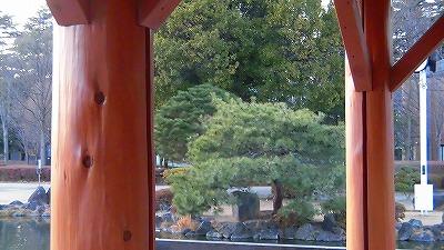f:id:kabutoyama-tigers:20180314160820j:plain