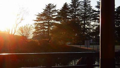 f:id:kabutoyama-tigers:20180314171953j:plain