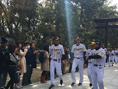 f:id:kabutoyama-tigers:20180321143541j:plain