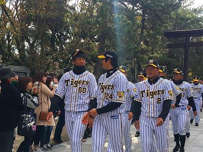 f:id:kabutoyama-tigers:20180321144838j:plain