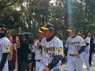 f:id:kabutoyama-tigers:20180321150237j:plain